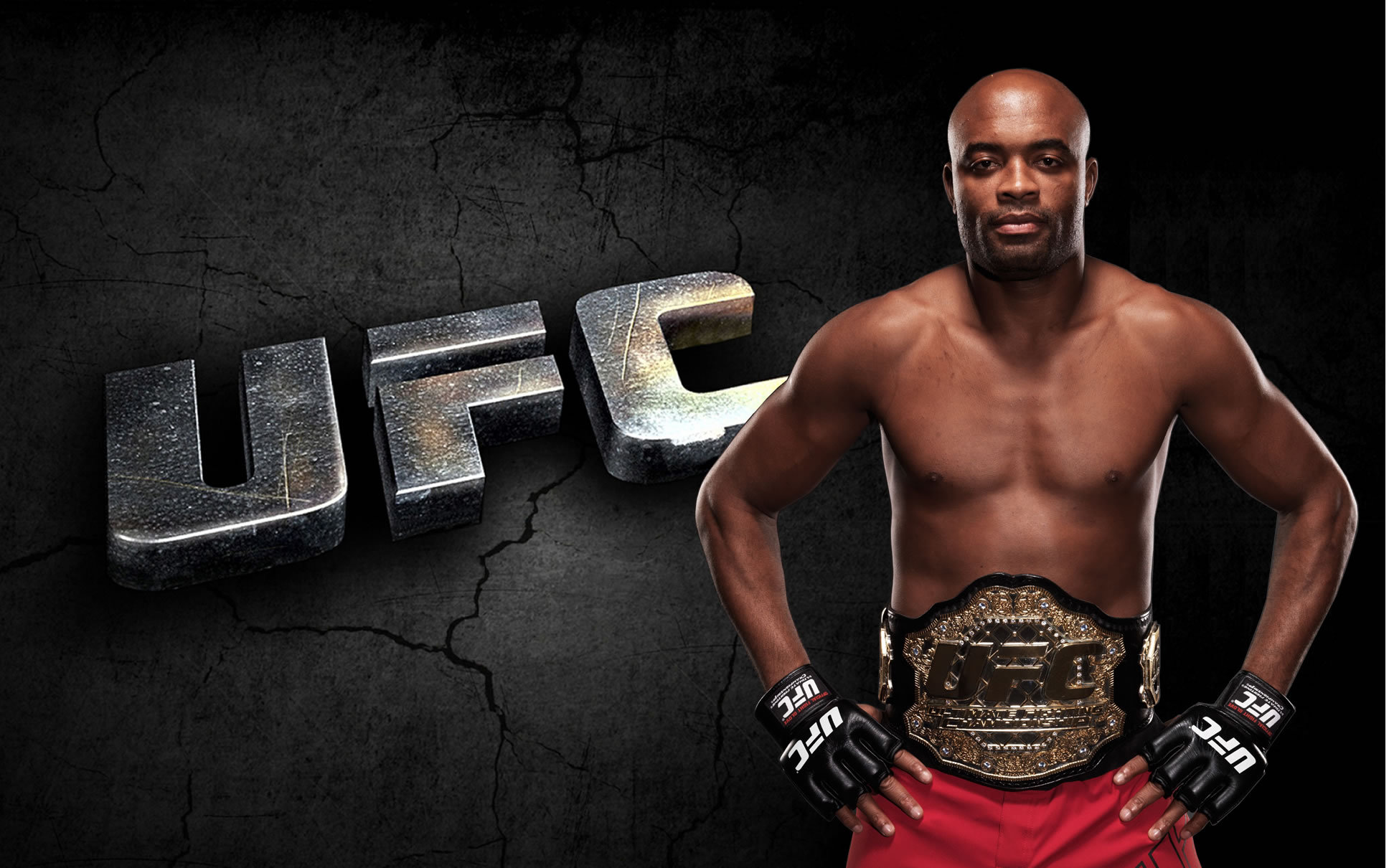 Champion Anderson Silva spider wallpapers and images   wallpapers 1936x1210