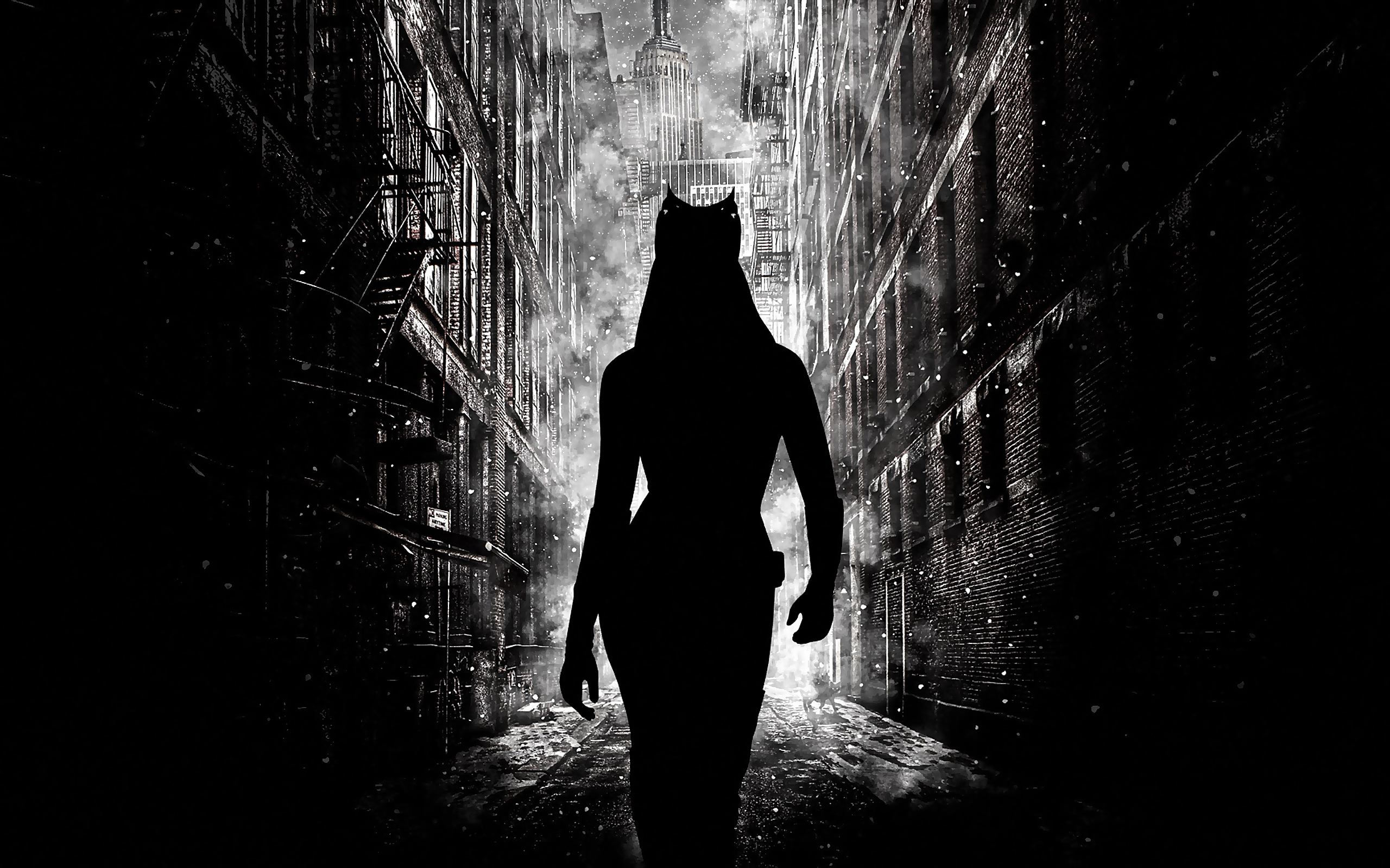 BW The Dark Knight Rises Catwoman Wallpaper Black and 2560x1600