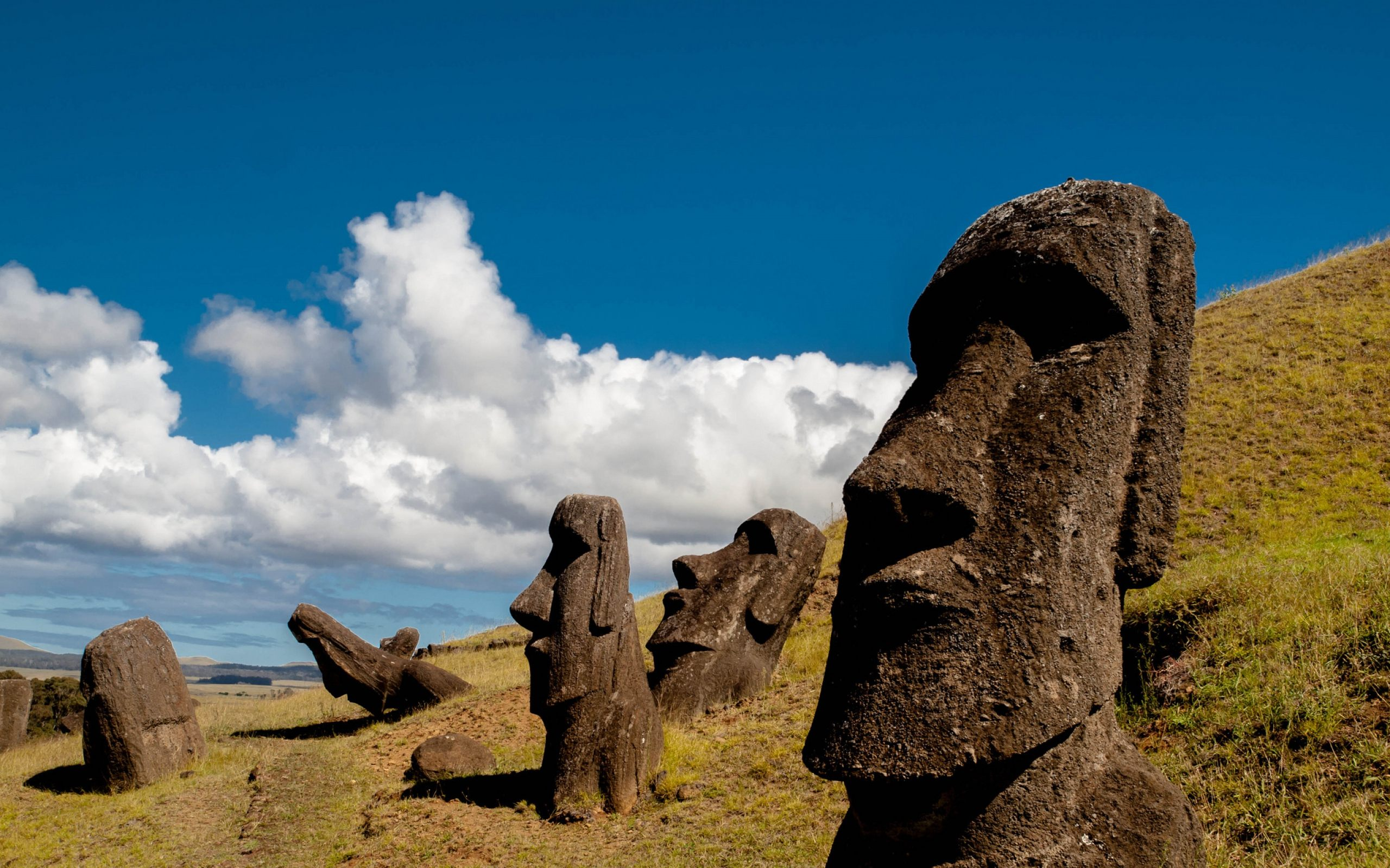 Easter Island Statues HD Wallpaper For Desktop amp Mobile 2560x1600