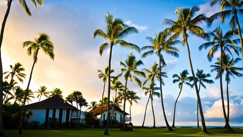 Hawaii Beach Houses HD Wallpaper   WallpaperFX 804x452