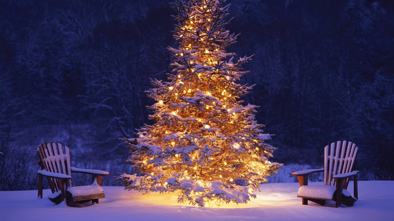 tree wallpapers Happy Christmas Merry Christmas 2013 Wallpapers 1280x720