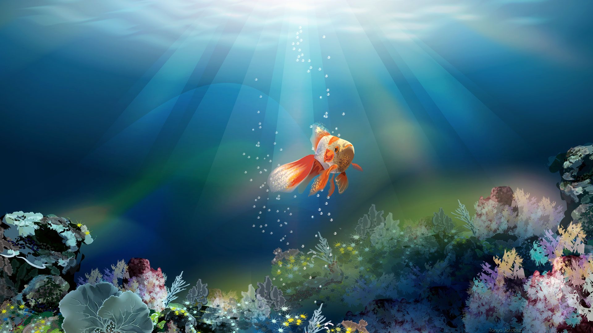Related Wallpaper for Fish Wallpaper 3D Desktop 1920x1080