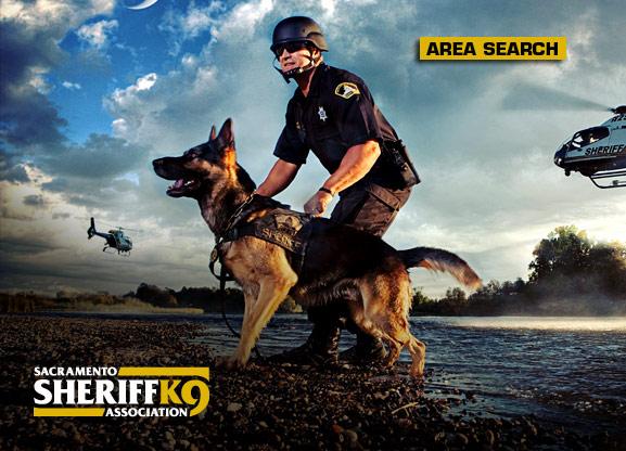 police k9 wallpaper 577x416