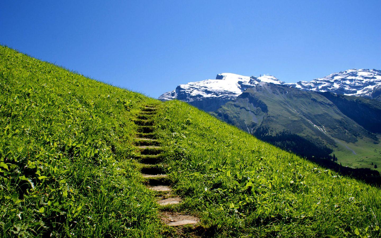 приготовленный картинки лестницы в гору есть