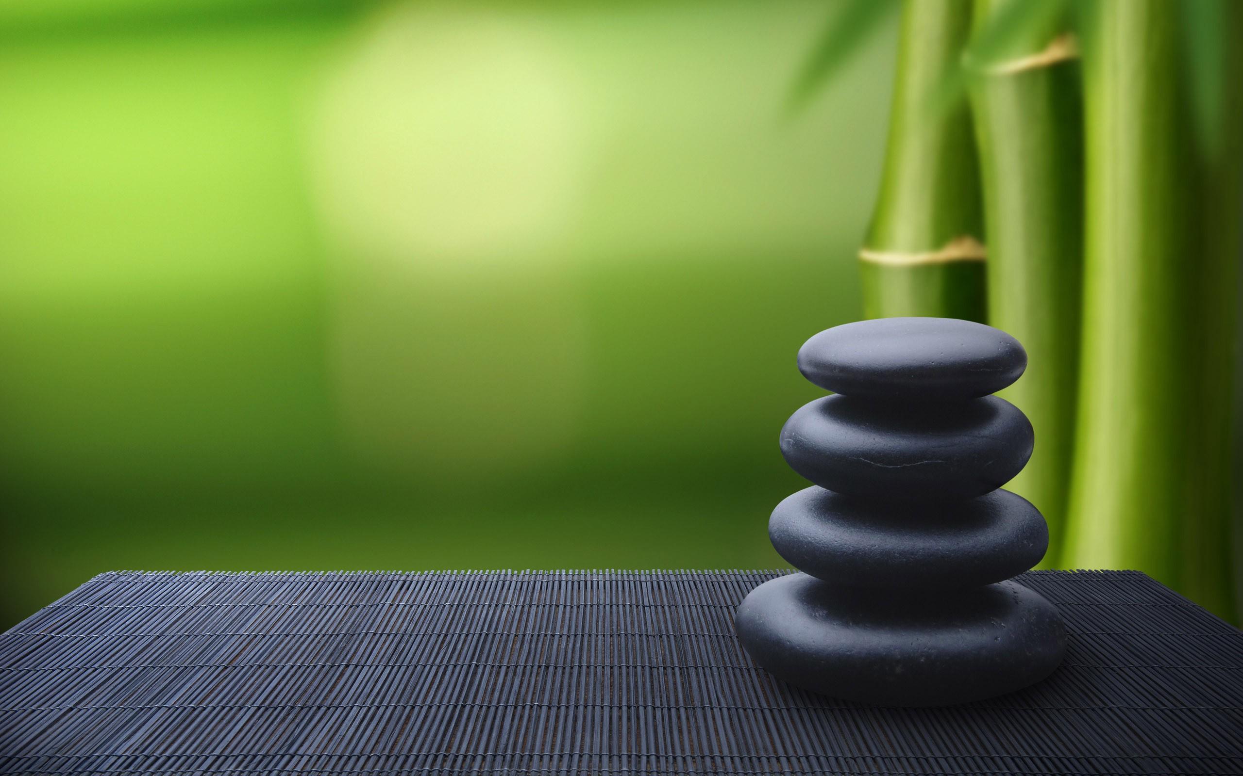 Bamboo and zen stones wallpaper Wallpaper Wide HD 2560x1600