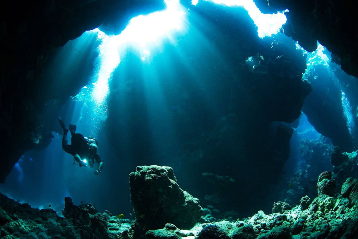 Cave diving underwater wallpaper 1494x1000 118270 WallpaperUP 1494x1000