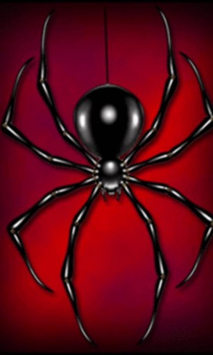 View bigger   Black Widow Spider L Wallpaper for Android screenshot 307x512