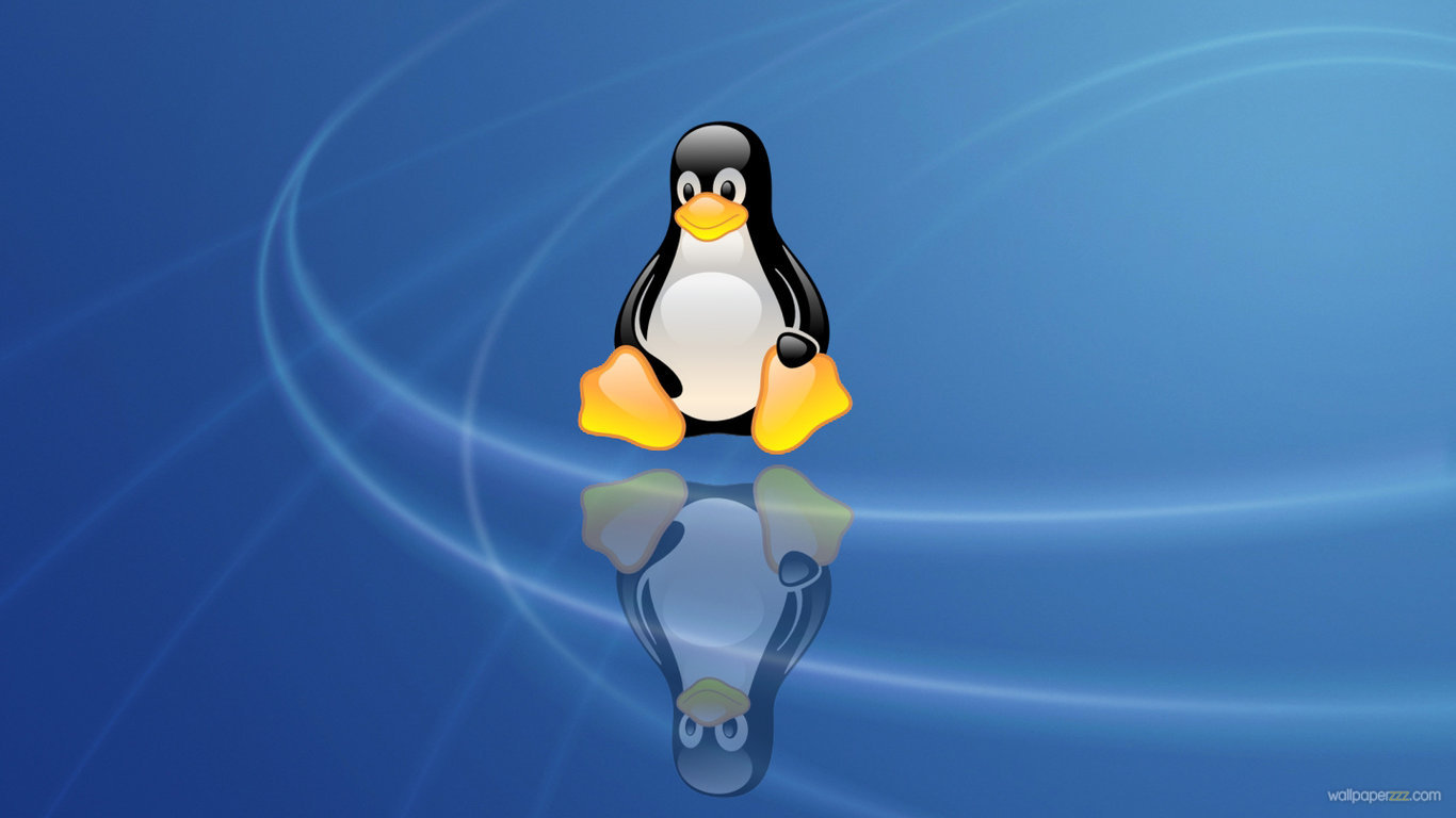 Download Linux Penguin HD Wallpaper Wallpaper 1366x768
