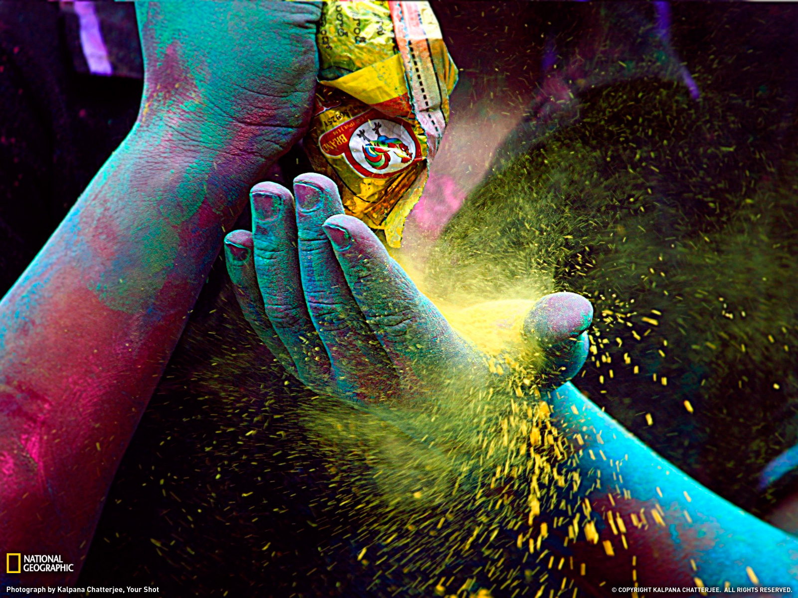 Colored Powder Photo Festival Wallpaper National Geographic Photo 1600x1200