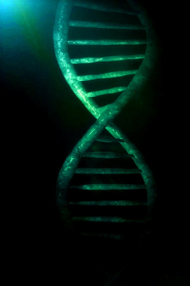Green DNA Structure Wallpaper   iPhone Wallpapers 640x960