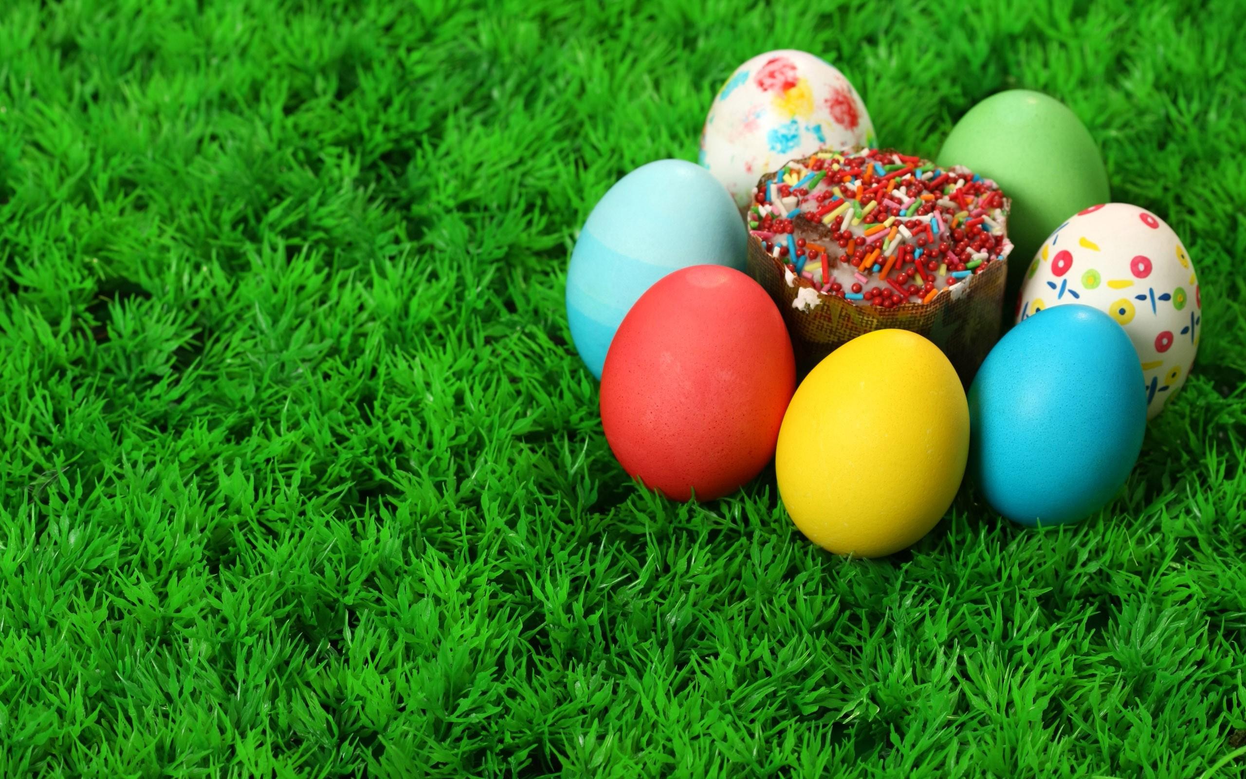 Download the Easter Egg Cupcake Wallpaper Easter Egg 2560x1600