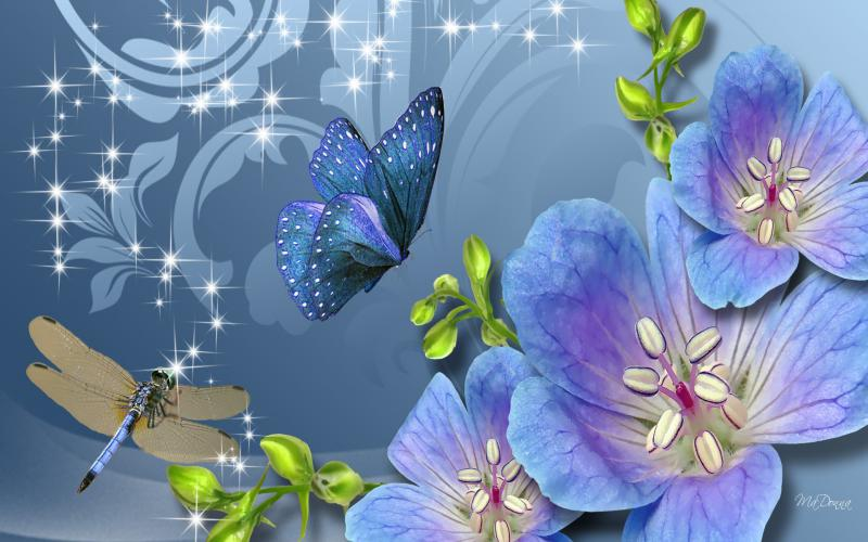 HD Fun Flowers Dragonfly Wallpaper Download   100901 800x500