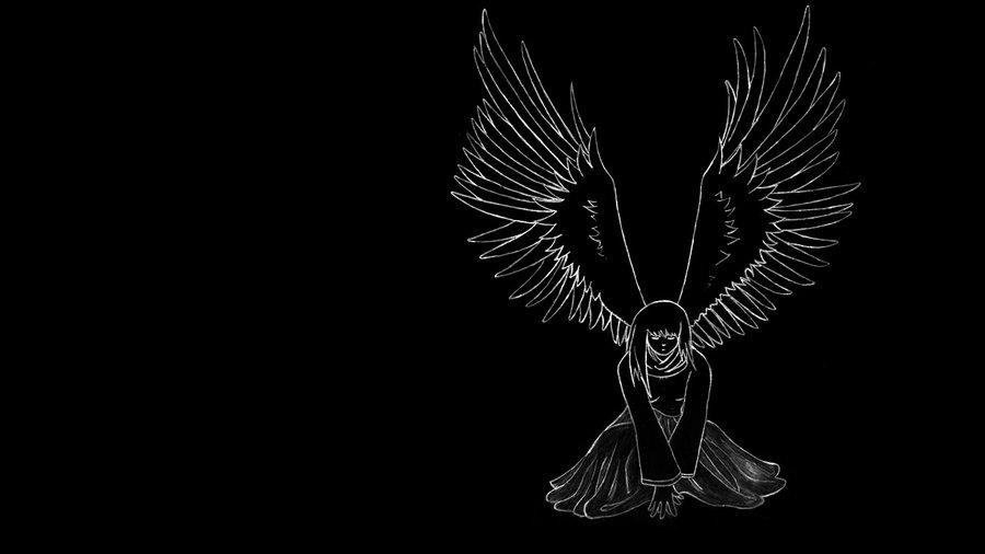 angel wing wallpaper 900x506