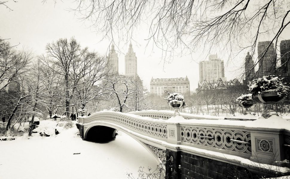 Beautiful Things images Winter In New York HD wallpaper and 970x600