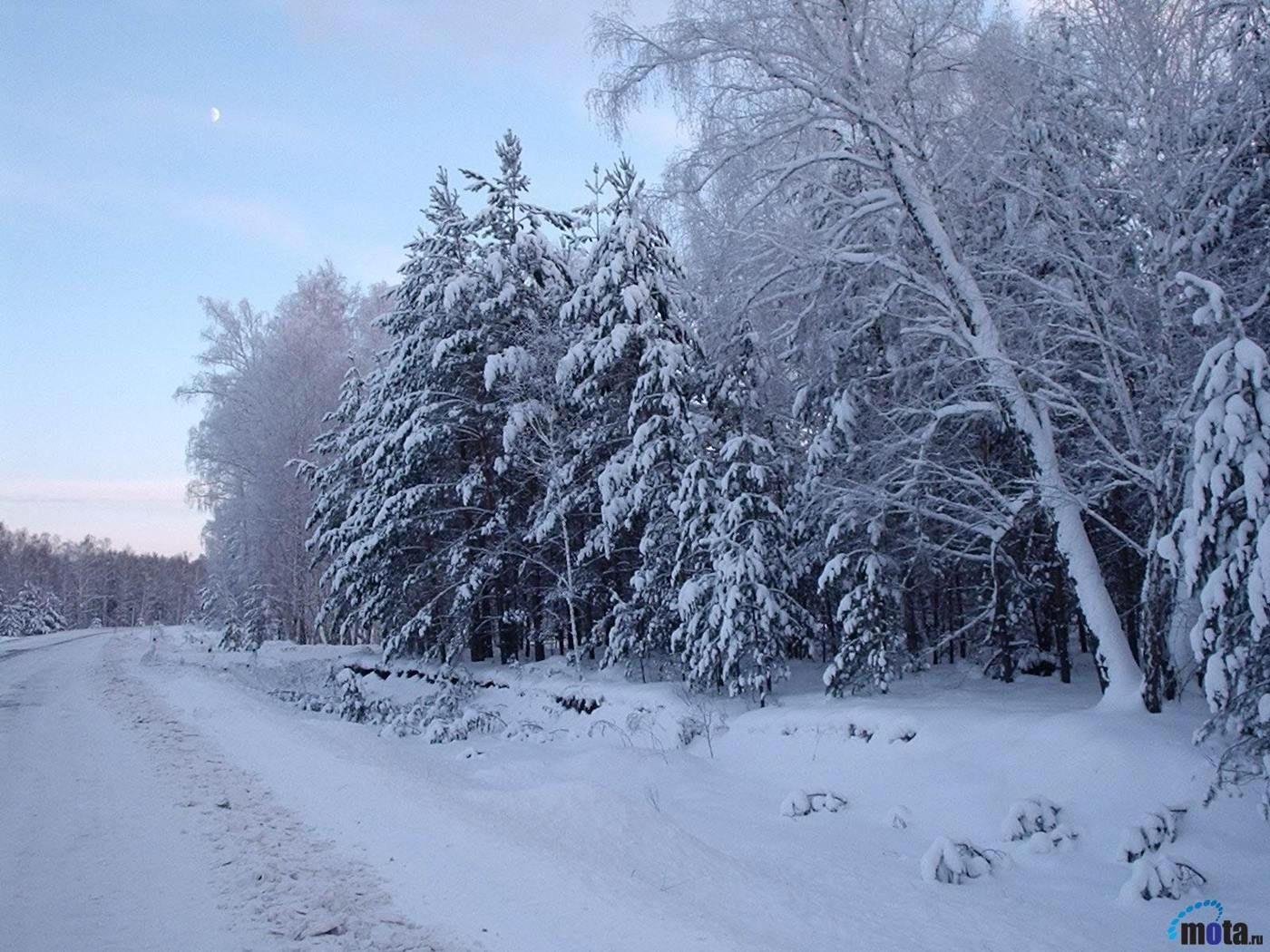 backgrounds 100 try it now related wallpapers nature tree snow 1400x1050