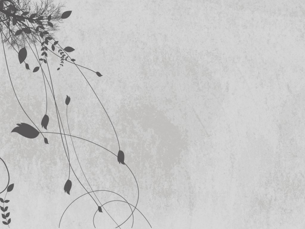 1024x768px Grey Floral Wallpaper Wallpapersafari