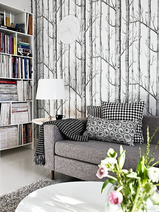 Birch wallpaper   some day it will be mine I dont know where I don 553x738
