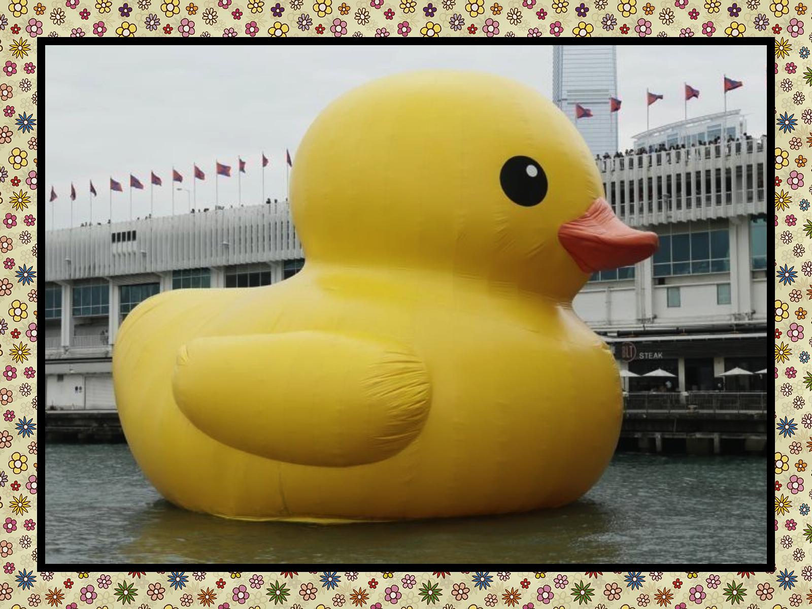 Giant Rubber Duck Wallpaper Giant rubber duck 1600x1200