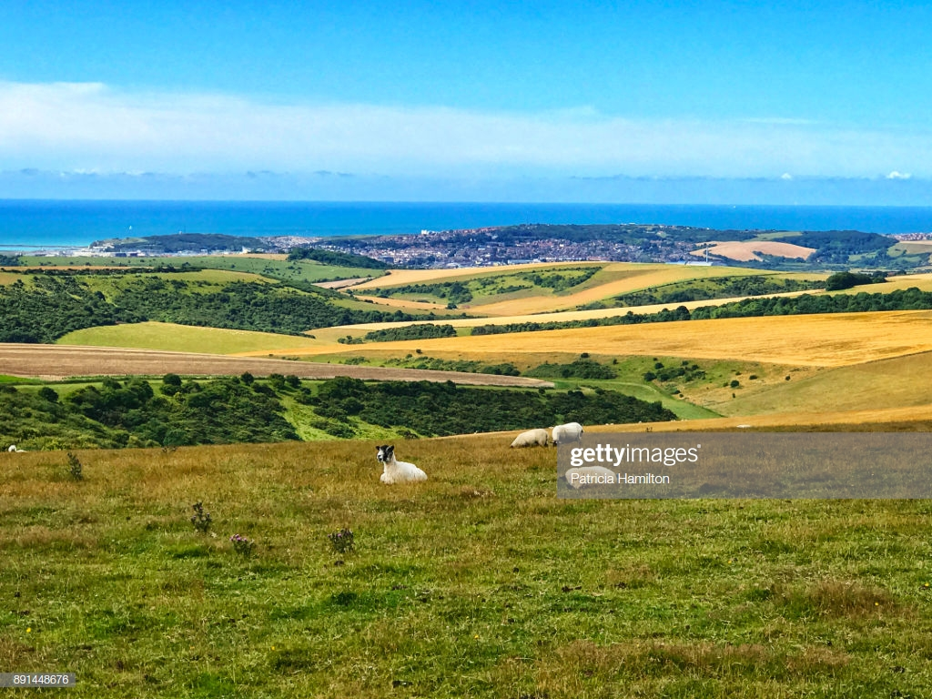 The South Downs With Brighton In The Background Stock Photo 1024x768
