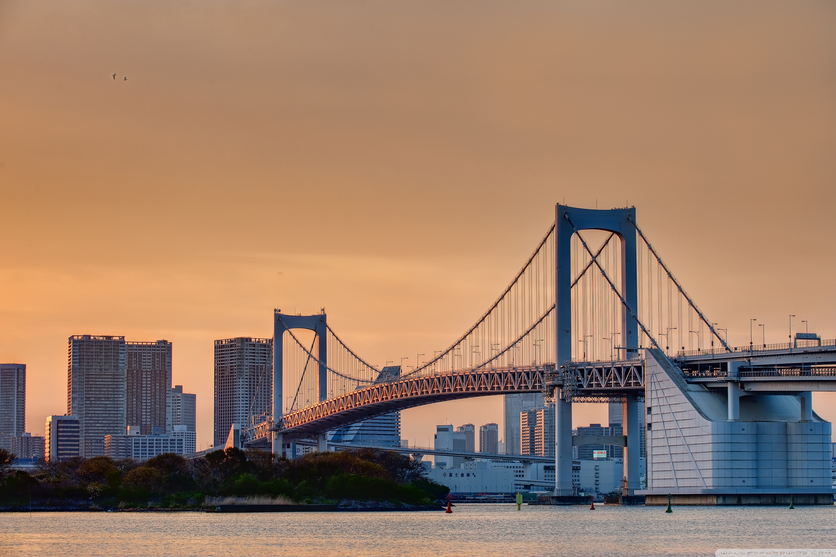 Odaiba Rainbow Bridge 4K HD Desktop Wallpaper for 4K Ultra HD 2736x1824
