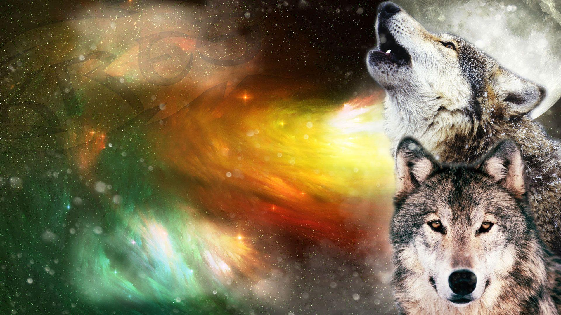 Красивый фон картинки волки