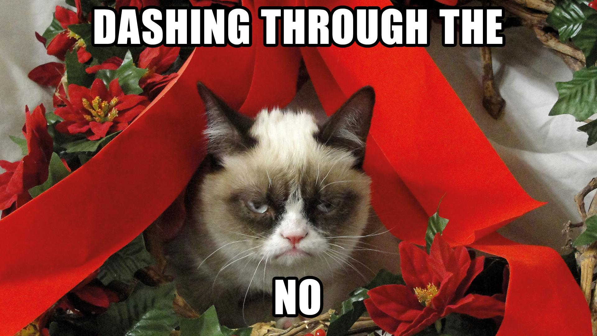 Grumpy Cat Meme Pictures humor funny cats christmas wallpaper 1920x1080