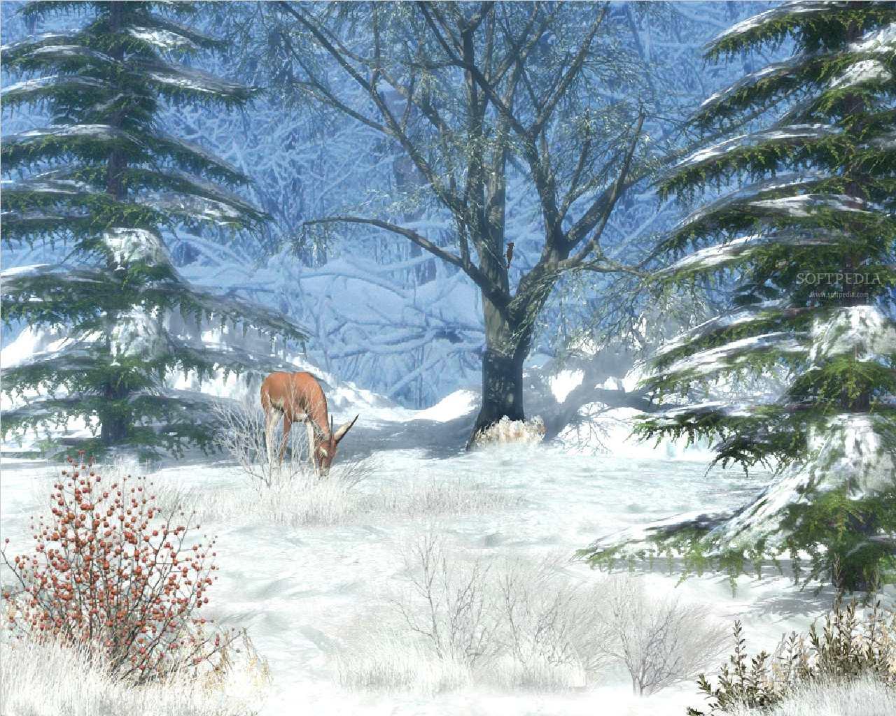 Winter Afternoon   Animated Wallpaper Screenshots 1280x1024