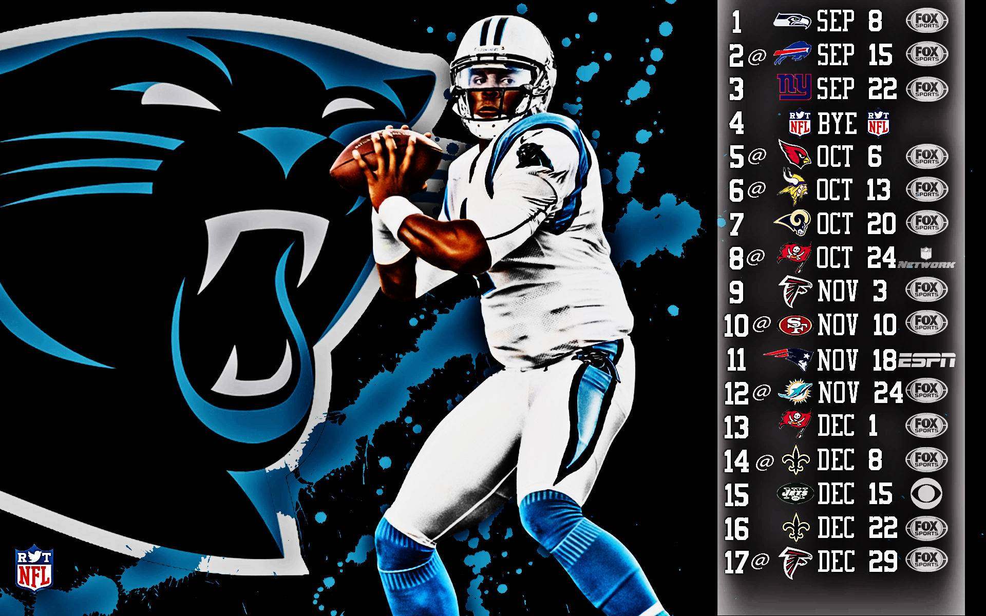 2013 Carolina Panthers football nfl wallpaper background by 1920x1200
