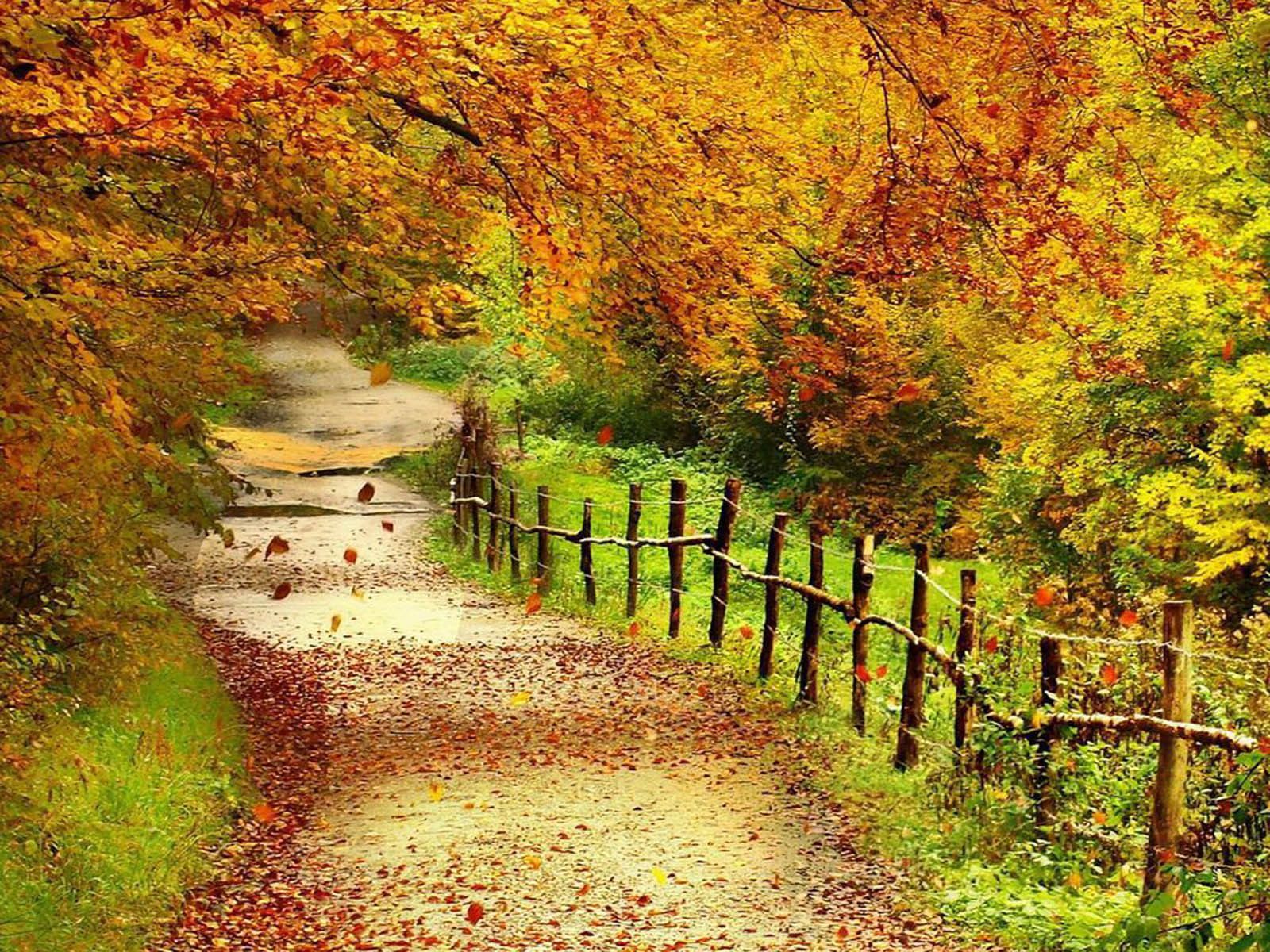 wallpapers Beautiful Autumn Scenery Wallpapers 1600x1200