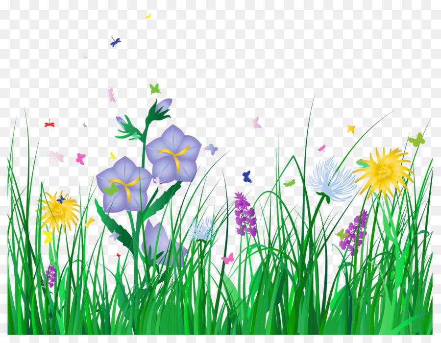 Grass Background png download   1200926   Transparent Flower 900x700