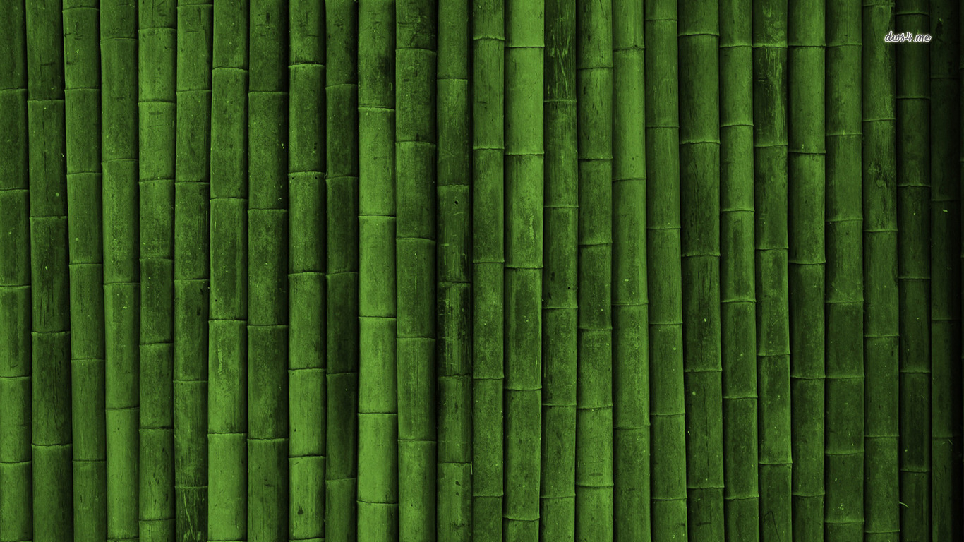 Bamboo wall wallpaper   Artistic wallpapers 1366x768