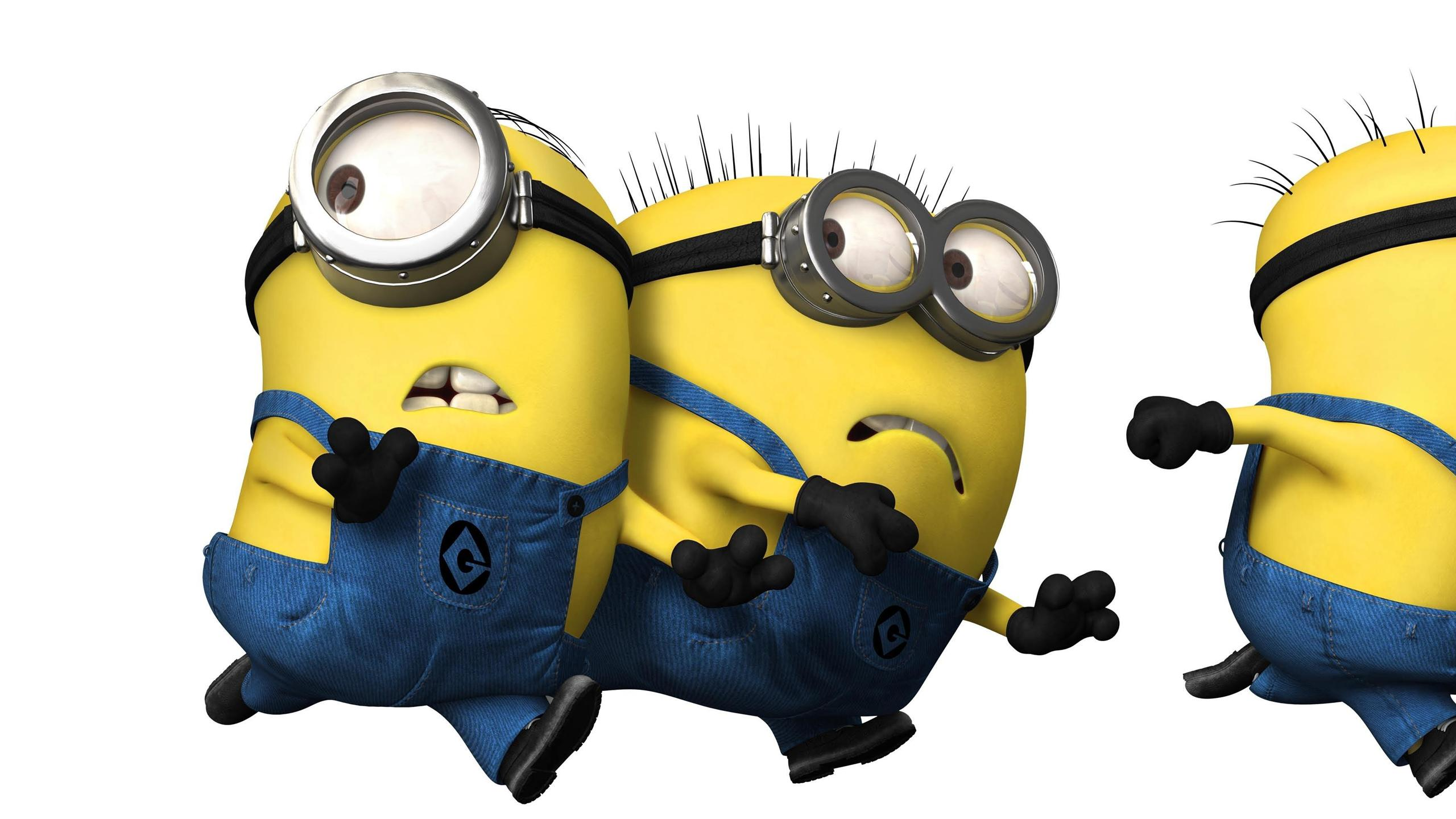 wallpaper minions cute definition wallpapers high windows 2560x1440