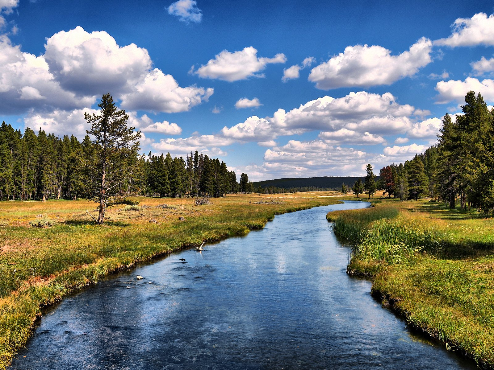 Yellowstone National Park Wallpapers and Background Images   stmednet 1600x1200