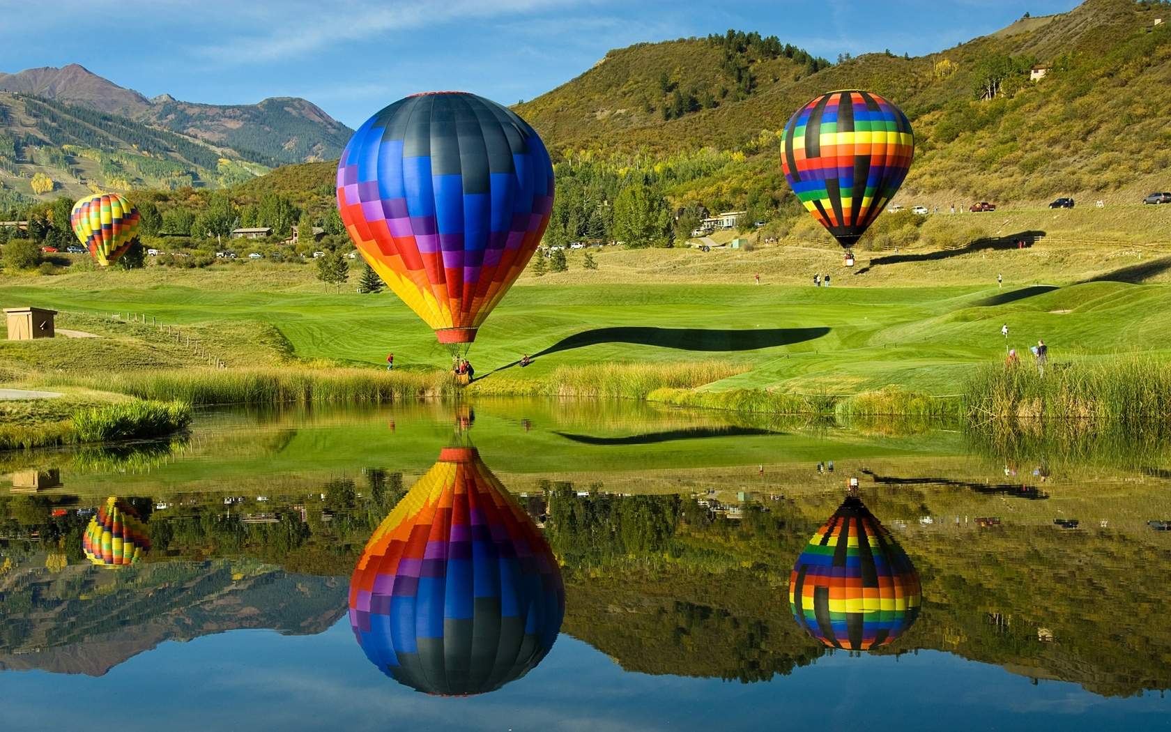 Download Colorful hot air balloons on the field wallpaper 1680x1050