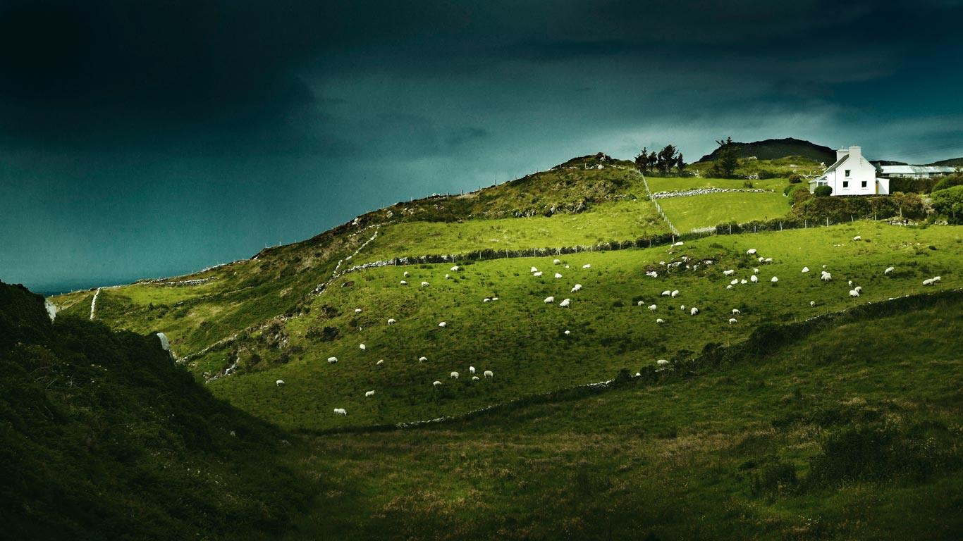 Bing Images   Sheeps Head   Sheeps Head Ireland Ben Hupfer 1366x768
