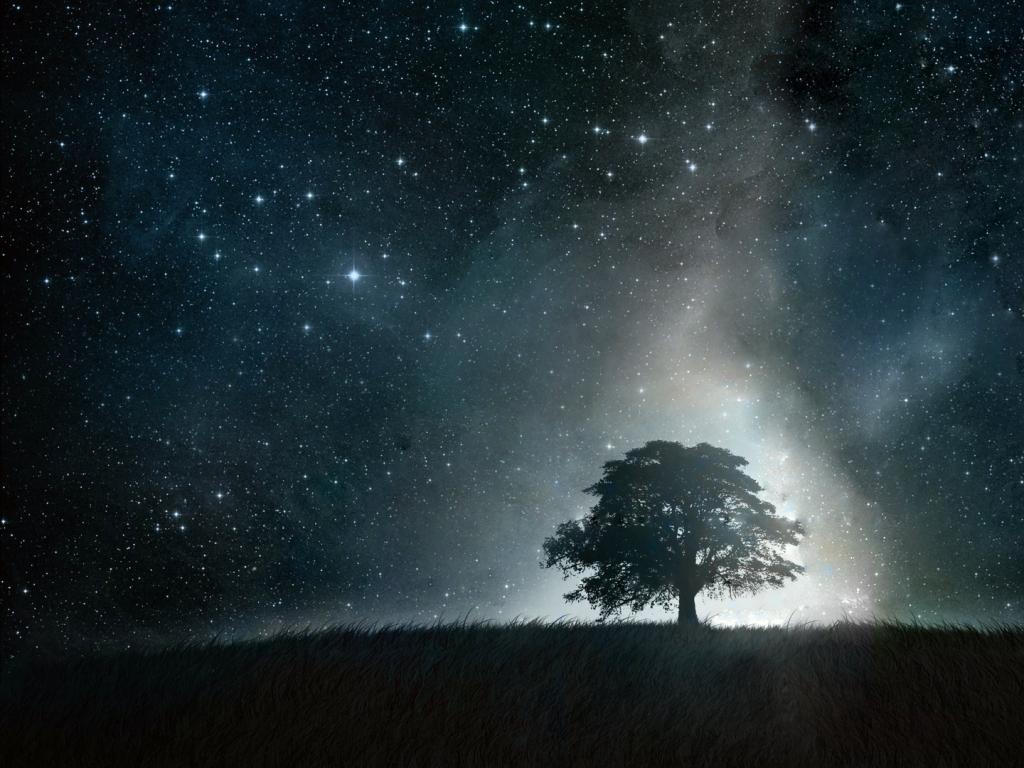 Beautiful Night Sky wallpaperWallpaper Background Wallpaper Background 1024x768