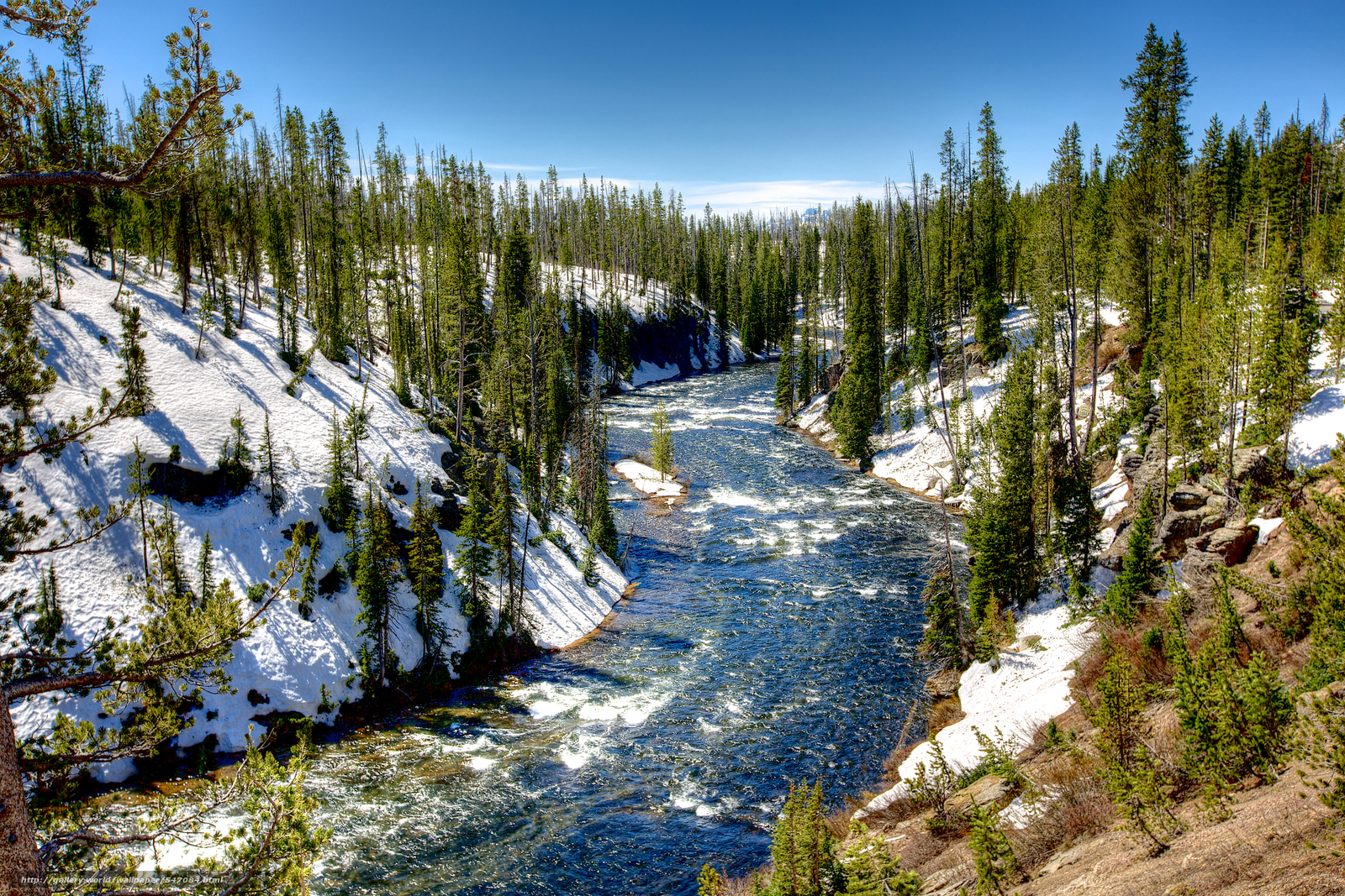 Download wallpaper Yellowstone National Park river trees landscape 1600x1067