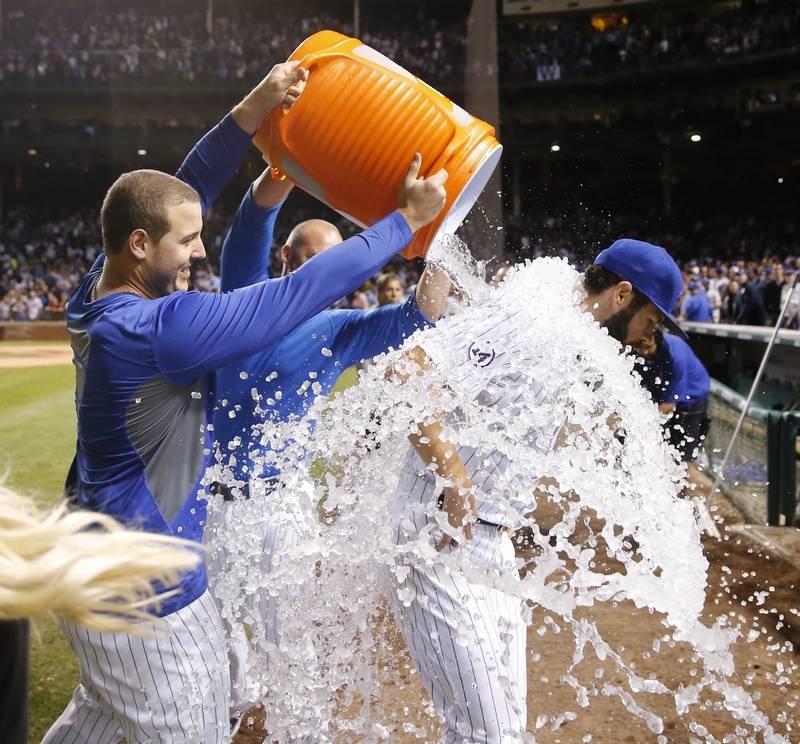 Images Cubs ace Jake Arrietas great season   DailyHeraldcom 800x744