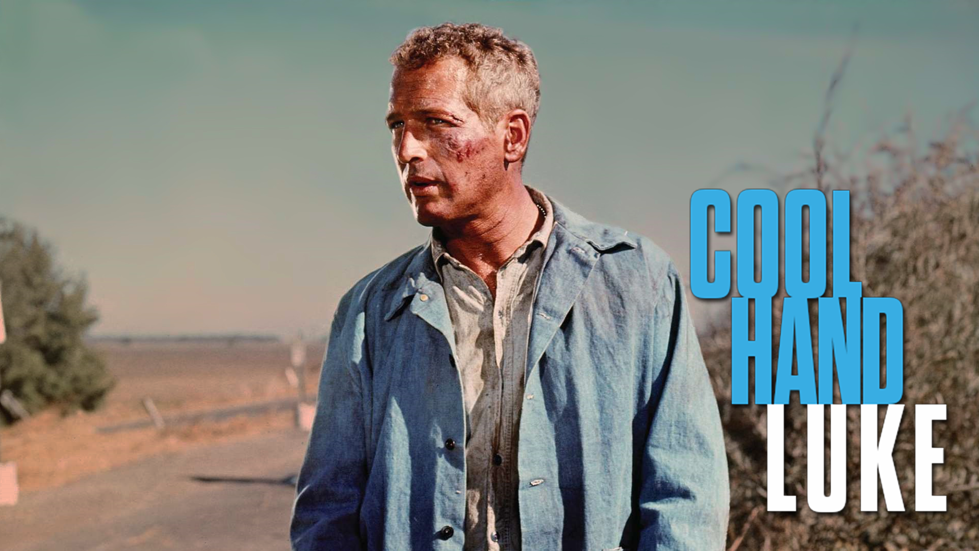 Cool Hand Luke Review 1920x1080