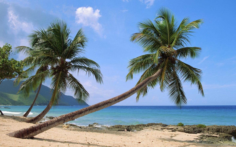 1440x900 Paradise Island desktop PC and Mac wallpaper 1440x900