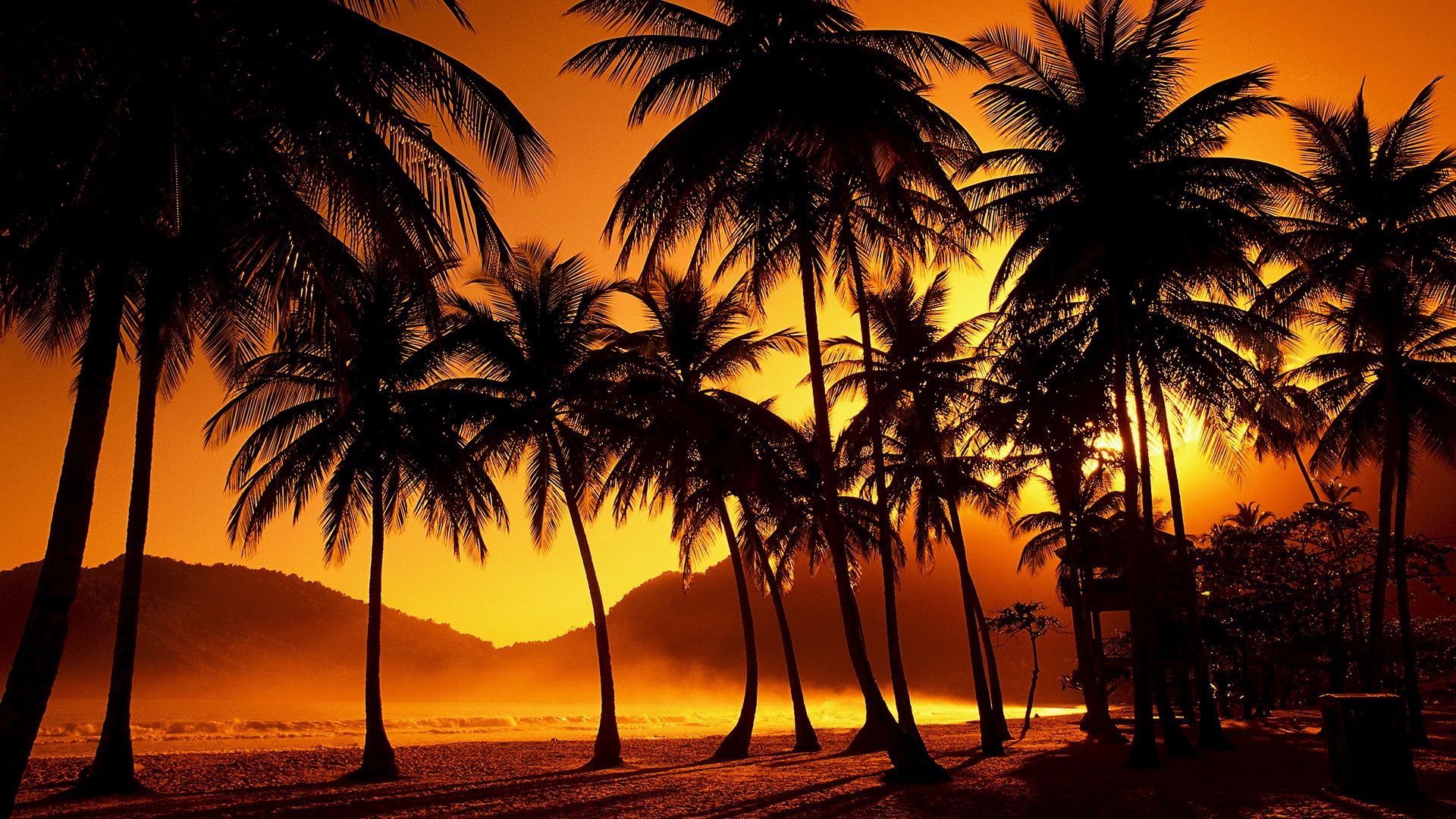 Free Download Tropical Sunset Wallpapers Hd Desktop Wallpapers Images, Photos, Reviews