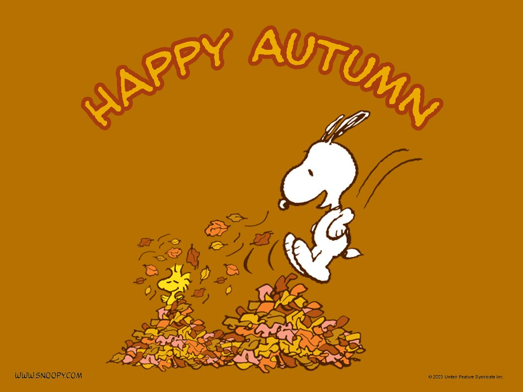 Snoopy happy Autumn   Autumn Wallpaper 25733615 1024x768