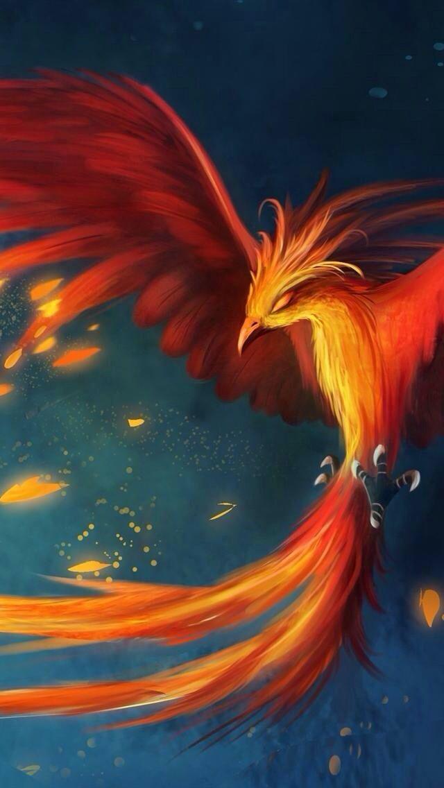 Phoenix Tattoos Phoenix painting Phoenix art Phoenix artwork 640x1136