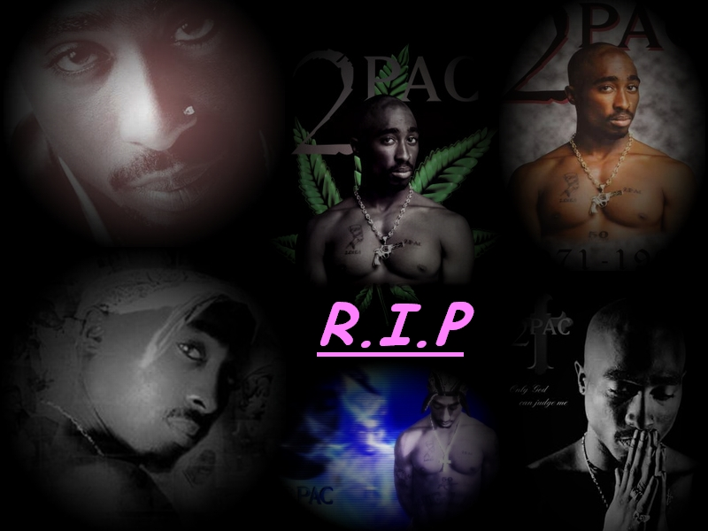 1280x960 2pac Wallpaper 1280x960 2pac Download 800x600