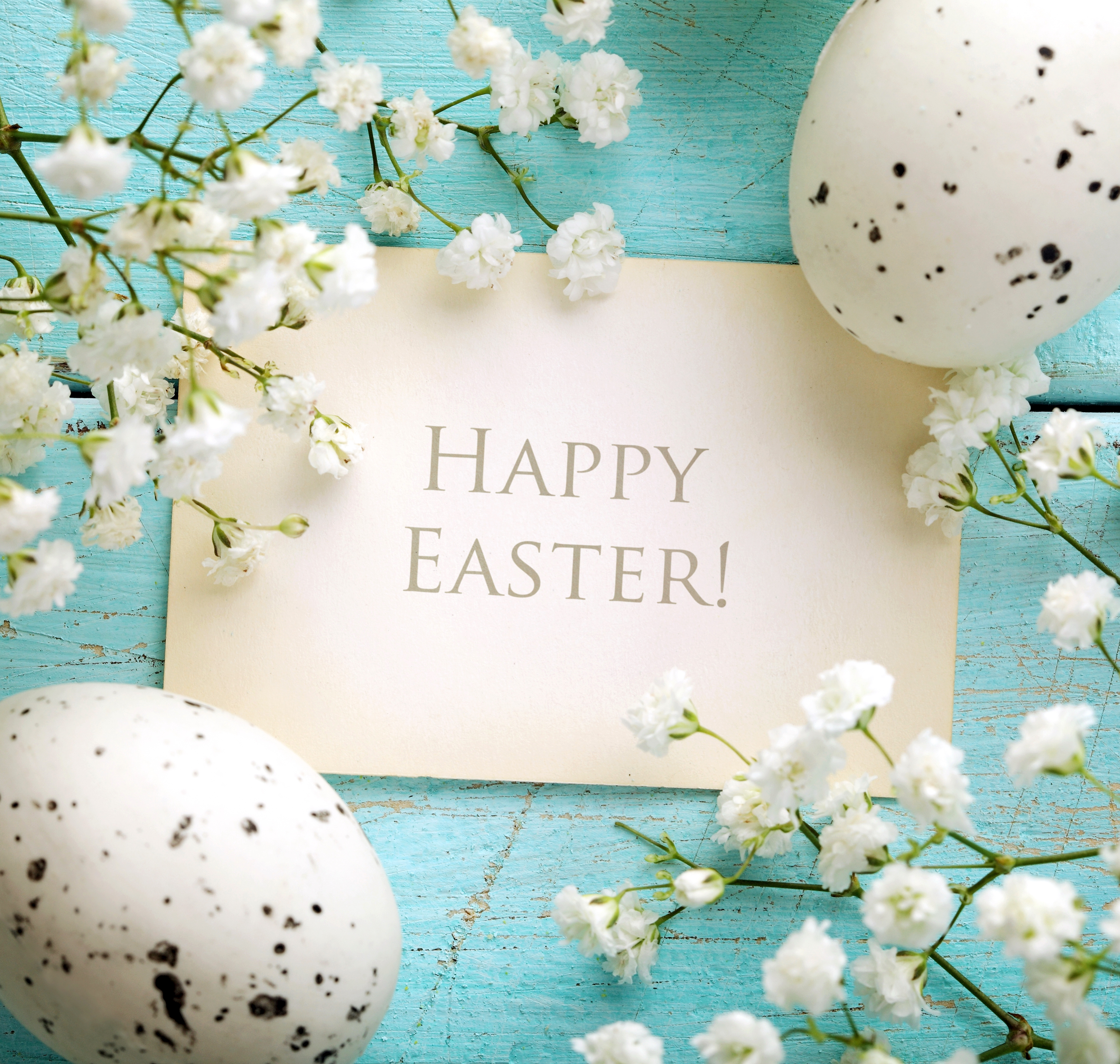 Happy Easter Images For Desktop Wallpapers Backgrounds Images 6000x5700