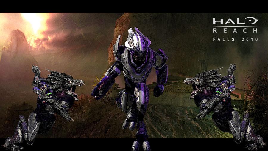 Halo Elite Wallpaper Halo reach elite wallpaper by 900x506
