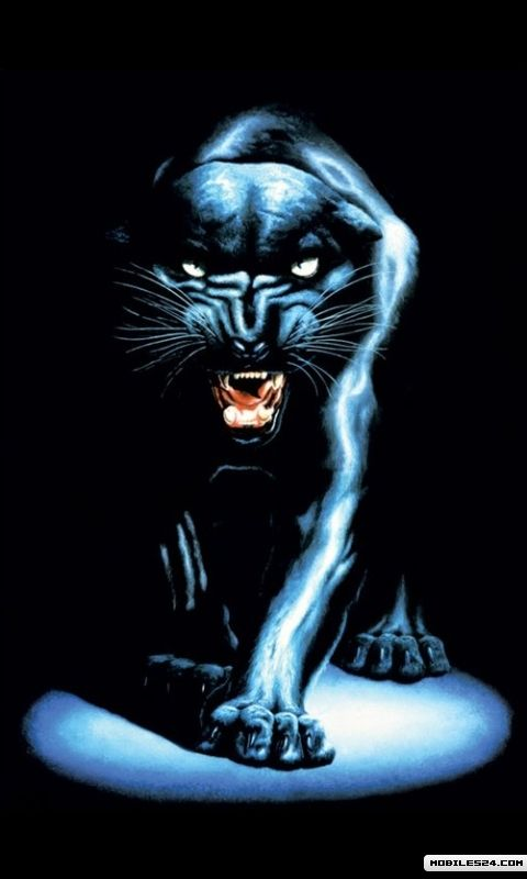 Download Carolina Panthers Wallpapers To Your Cell Phone Apps 480x800