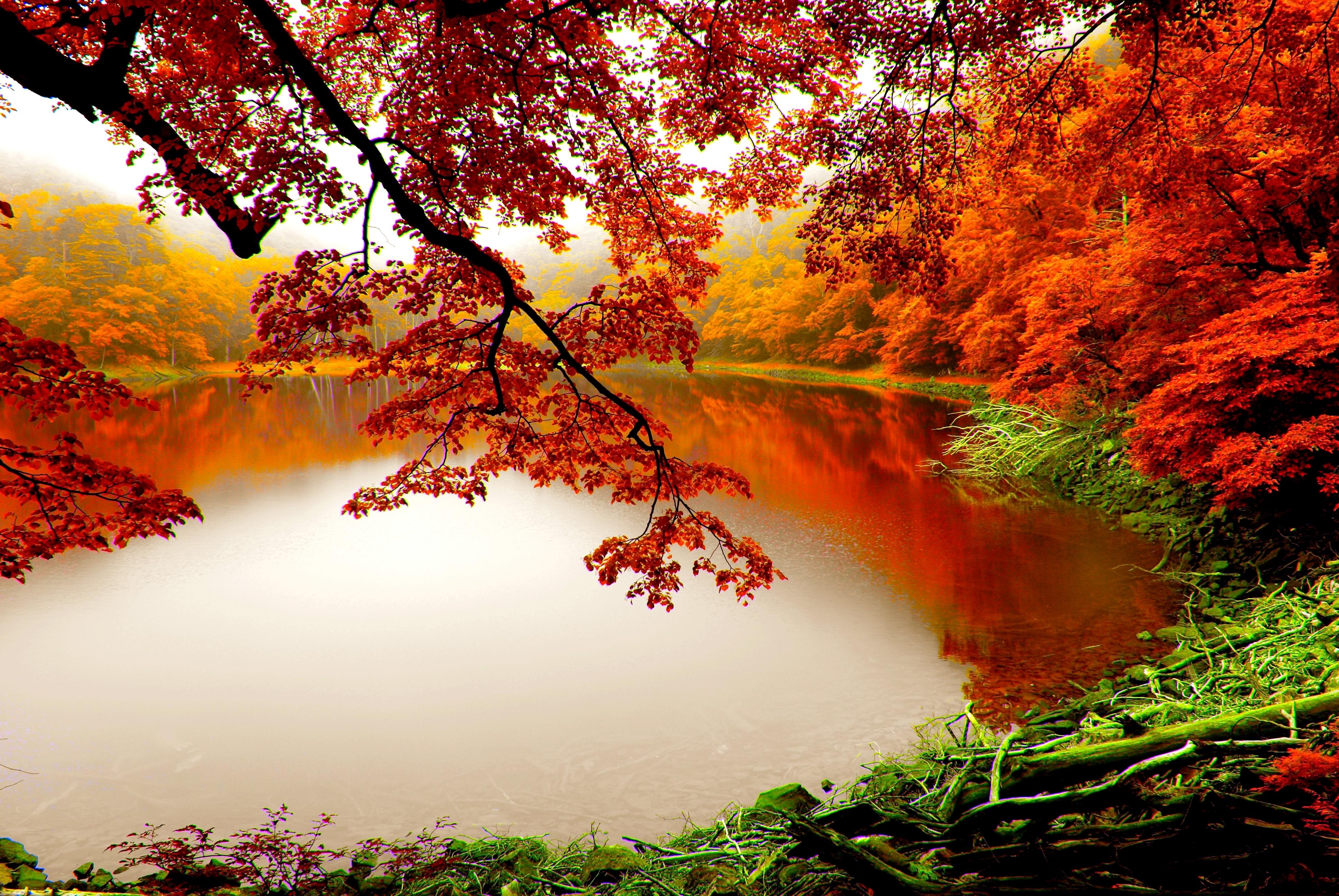[45+] Autumn Lake Desktop Wallpaper on WallpaperSafari