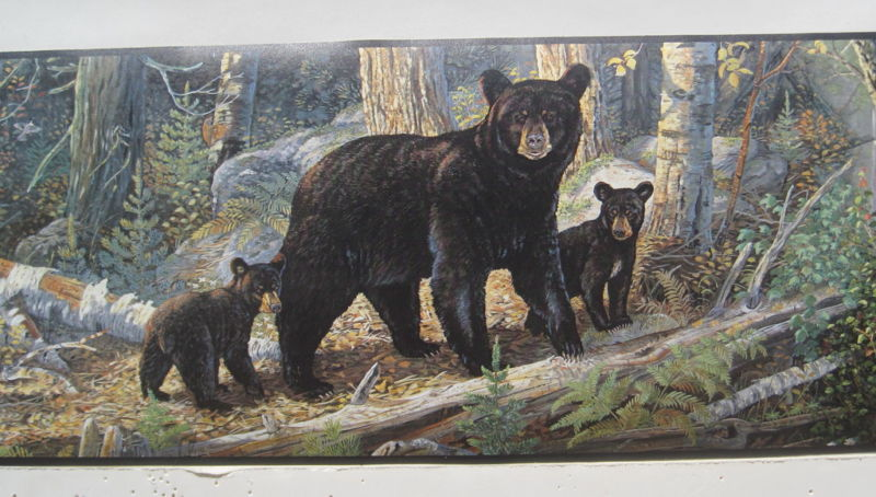 BLACK BEAR with CUBS BEARS in the WOODS Wallpaper Border 6 800x454