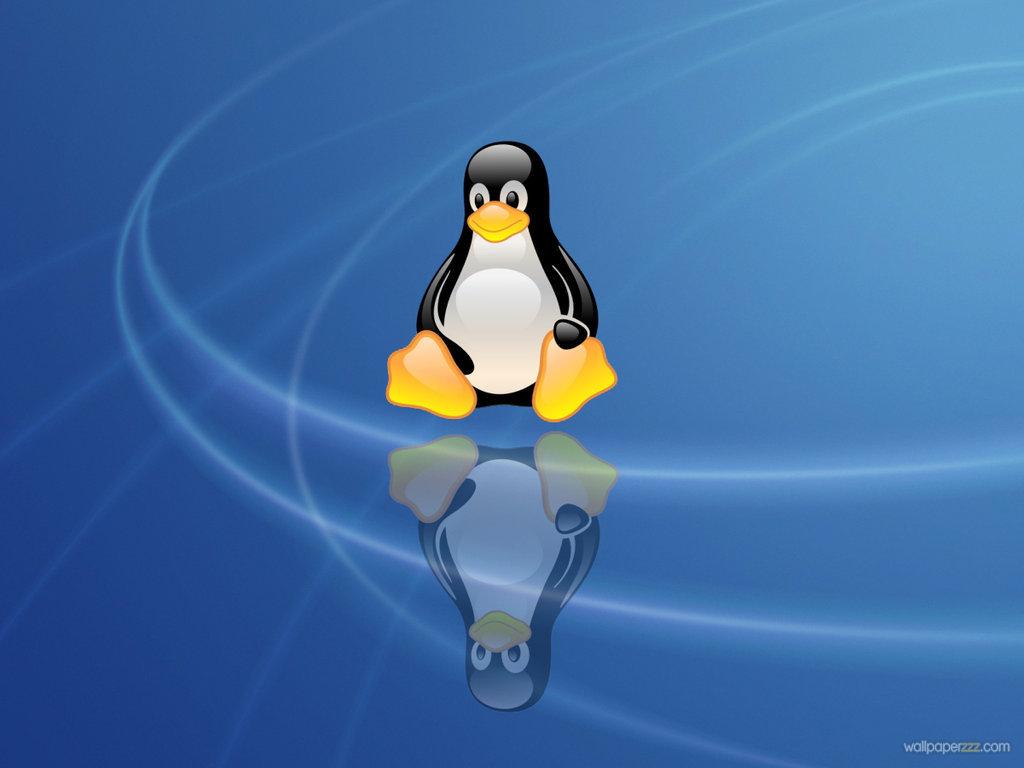 linux penguin wallpaper wallpapersafari